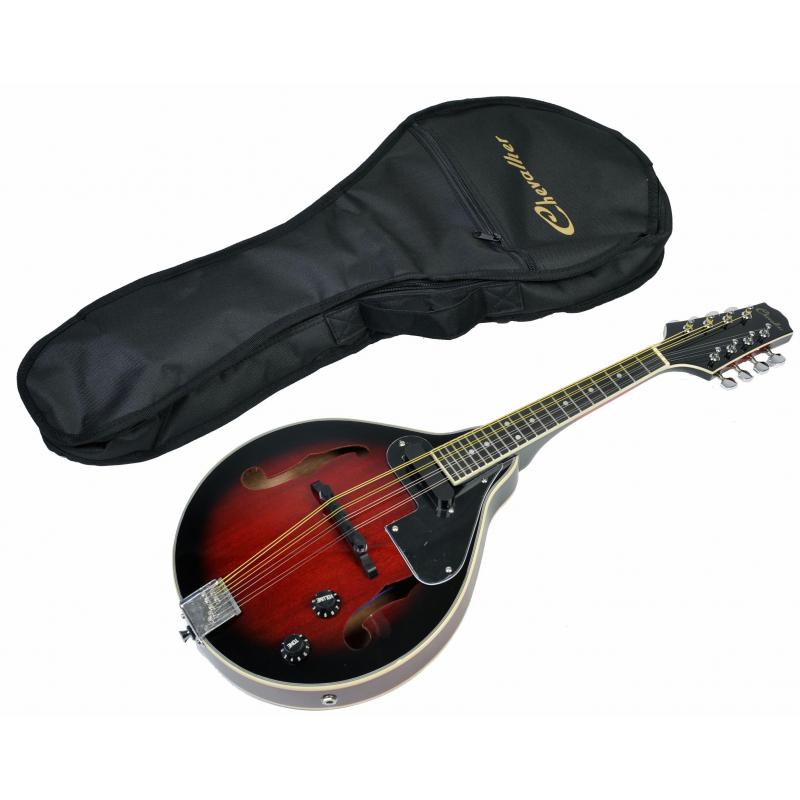 Mandoline électro-acoustique